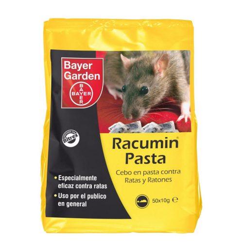 ▷ 17 Trampas caseras para ratas y ratones | ¡Acaba con ellas!