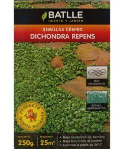 Césped Dichondra Repens-96